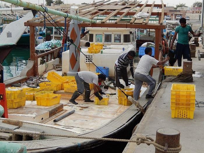 العمالة الأجنبية في قطر
