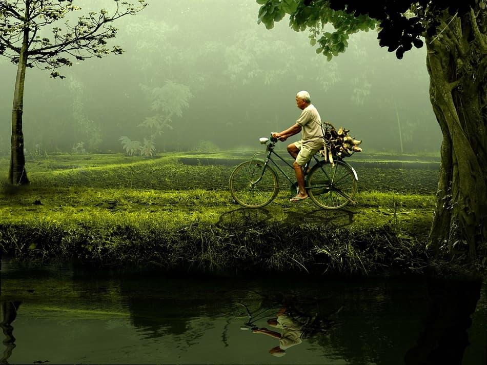 رجل عجوز يقود دراجة وسط الأشجار والطبيعة