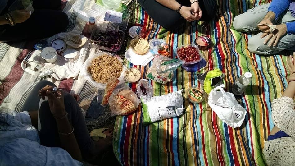 طعام متنوع على ملائة خلال رحلة خلوية