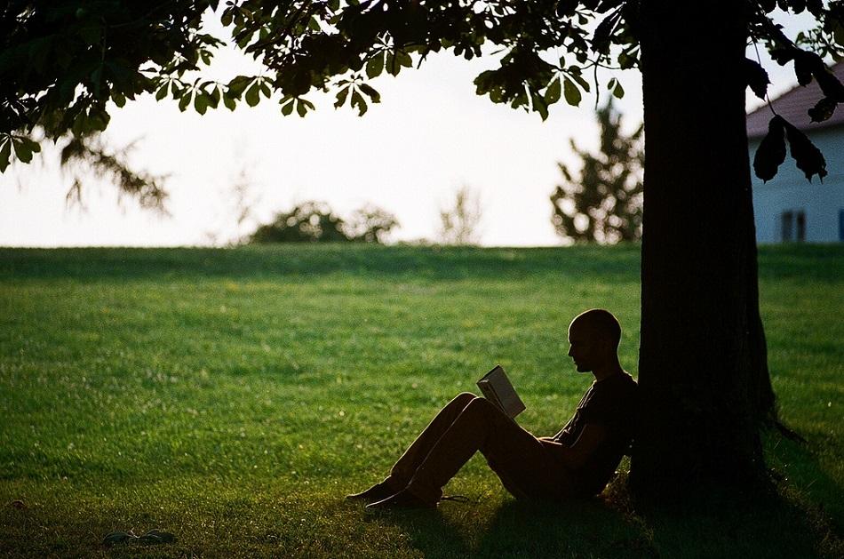 رجل يستند إلى شجرة ويقرأ كتابا